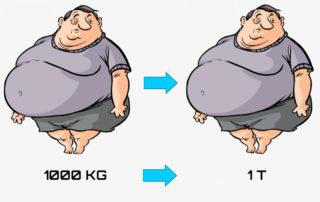 Конвертировать килограммы в тонны: онлайн-калькулятор