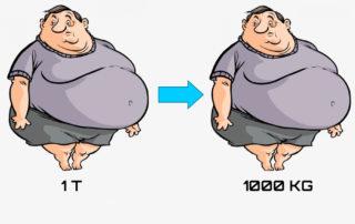 Перевести тонны в килограммы: онлайн-калькулятор